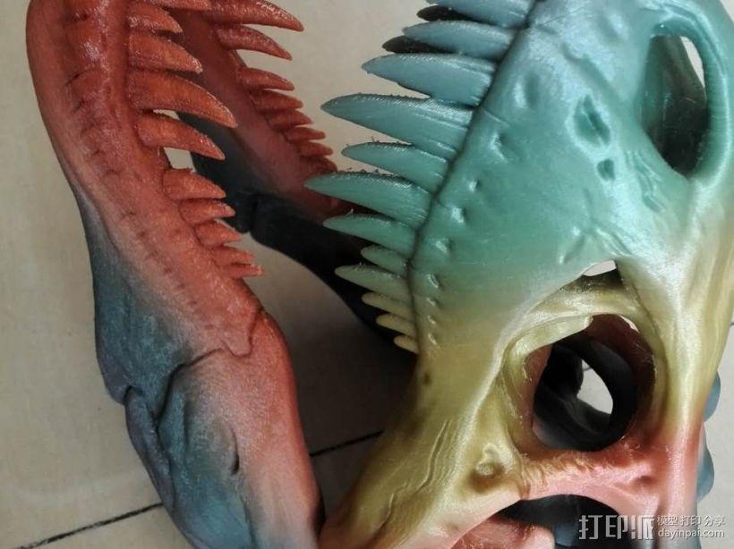 恐龙头骨 3D模型  图2