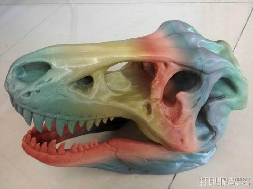 恐龙头骨 3D模型  图1