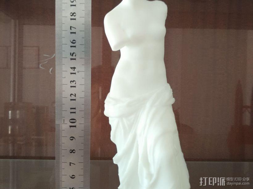 爱与美 3D模型  图2