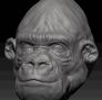 猩猩 3D模型 图1
