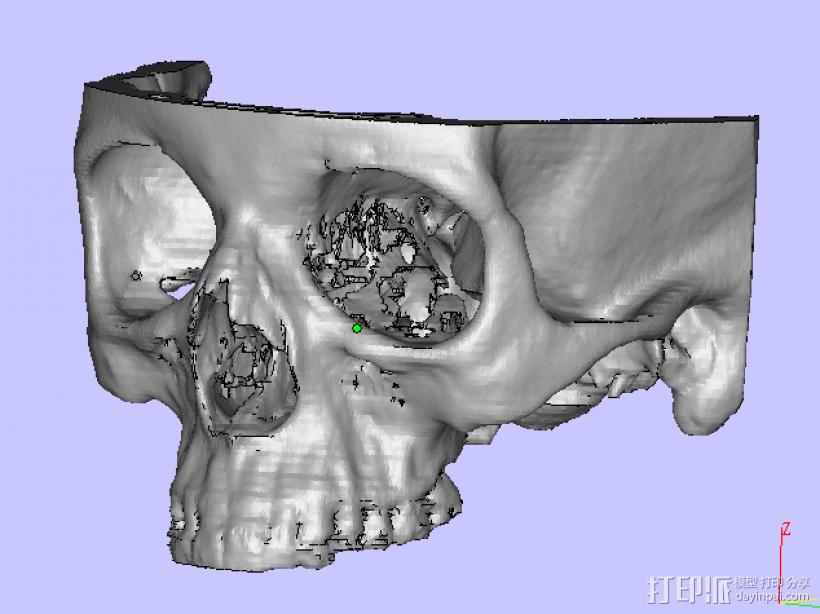 上头骨 3D模型  图1