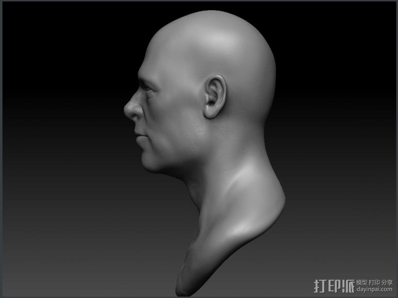 Brad Pitt高精模型 3D模型  图1