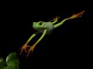 可爱的青蛙 3D模型 图1