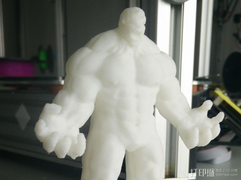 绿巨人(裤子准备用布料代替) 3D模型  图2