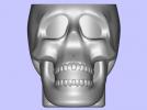骷髅小酒杯 3D模型 图1
