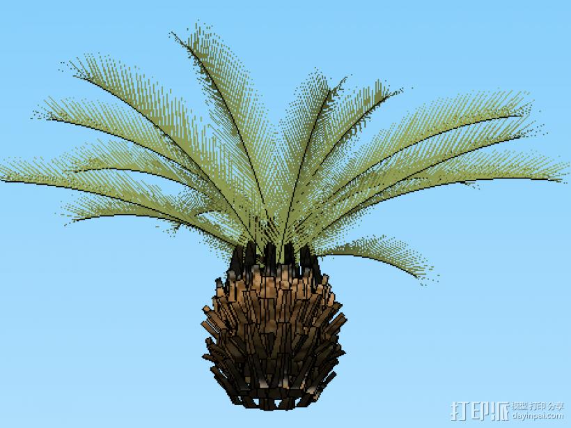铁树 3D模型  图3