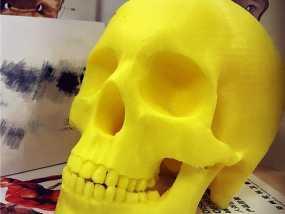 头骨 3D打印制作