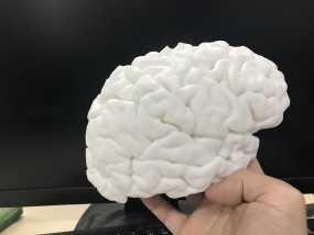 右脑 3D打印制作