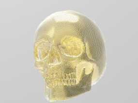 黄金骷髅 3D模型